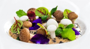 Tasting evening: Truffle menu